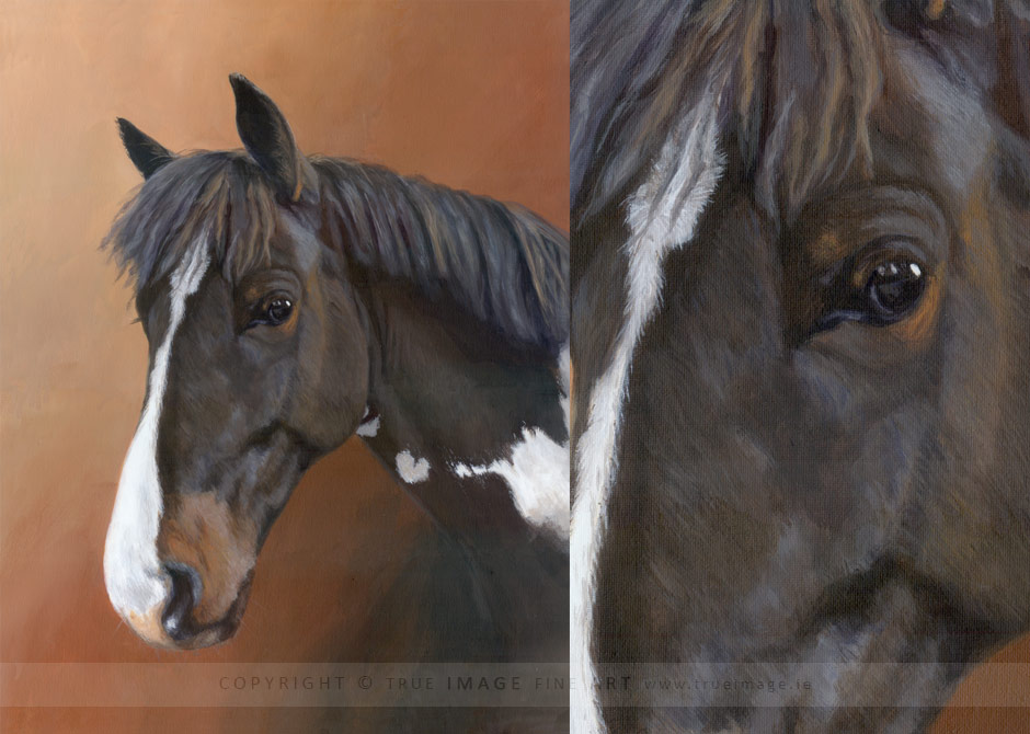 pony portrait painting