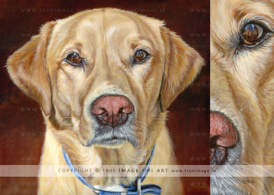 golden-labrador-retriever-painting