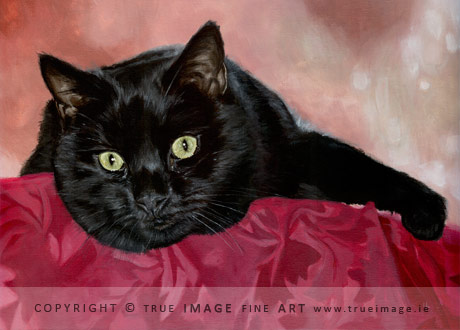 black cat painting