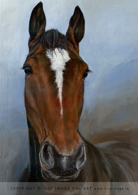 brown horse in acrylic