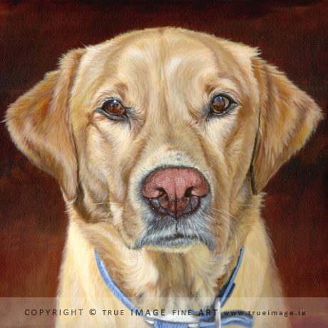 golden labrador retriever painting