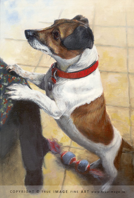 jack russell painting in acrylic