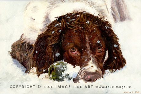 springer spaniel in snow portrait painting