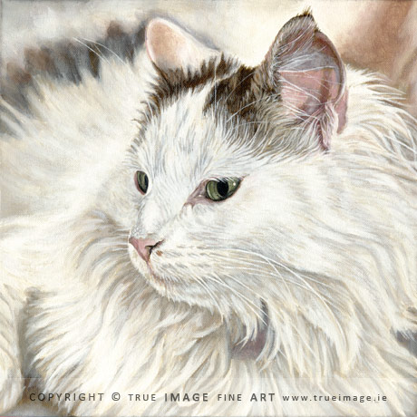 white cat portrait painting
