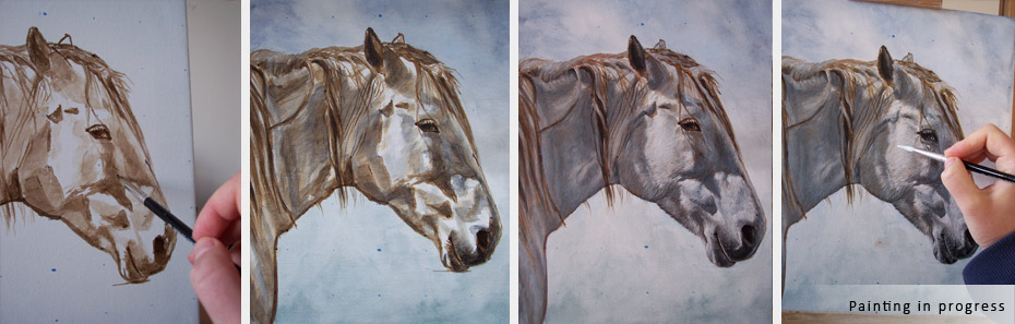 white horse portrait painting in progress photographs
