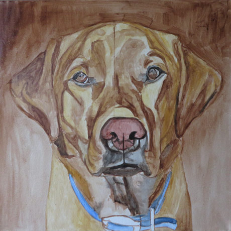 labrador-painting-progress1