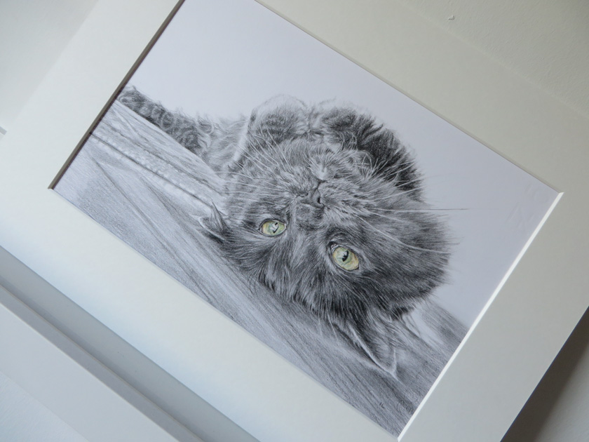 mounted portrait of a cat