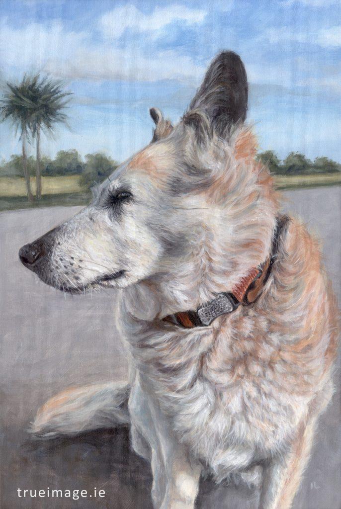 labrador cross dog painting acrylic