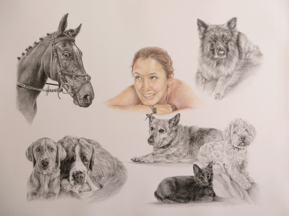 montage drawing of a girl with her pets