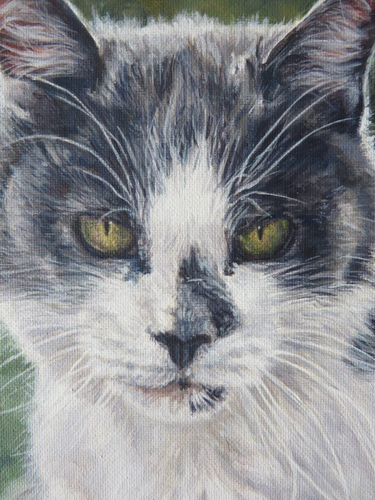cat portrait painting detail